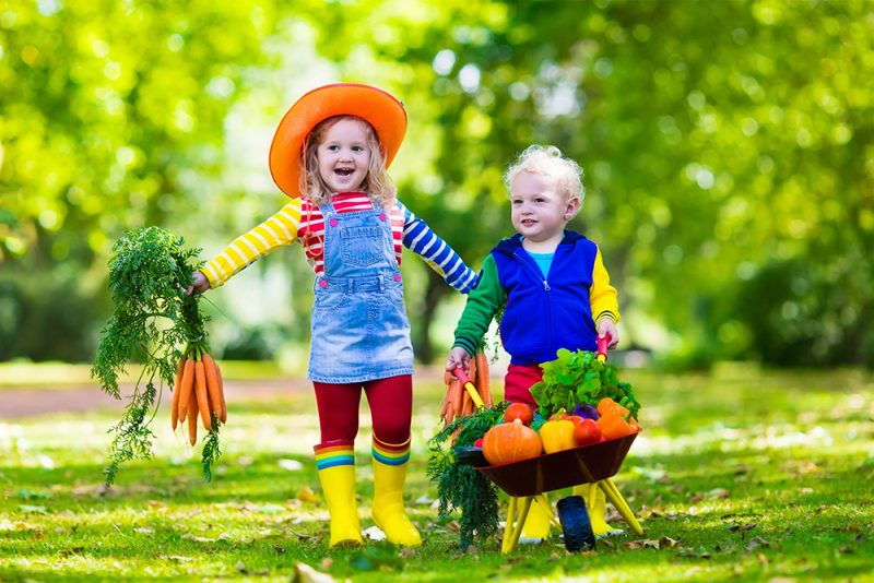 vitamine pentru copii