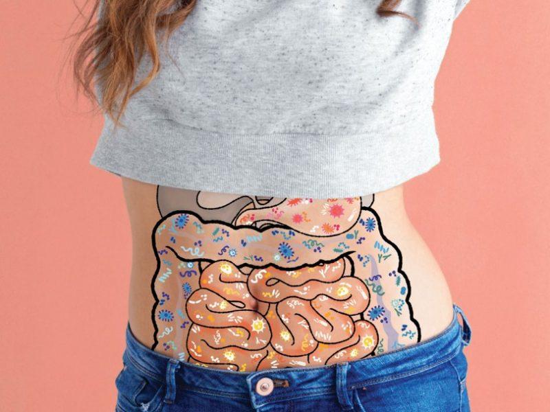 prebiotice si probiotice